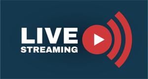 Backgammon Live Stream